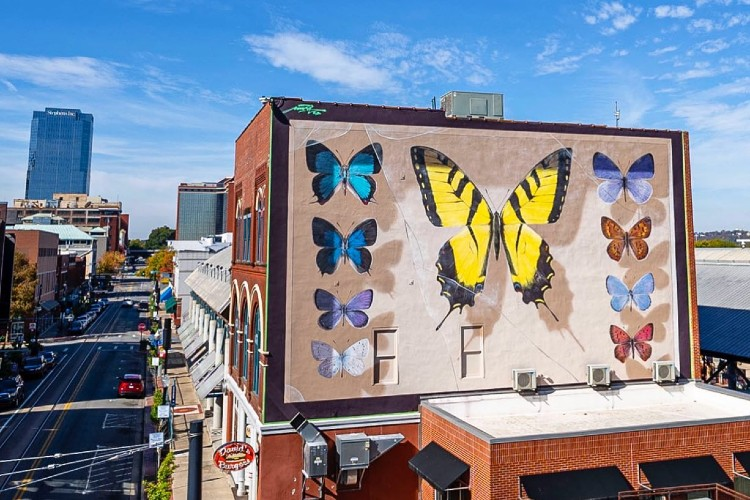 Butterfly Mural Brightens River Market Hall