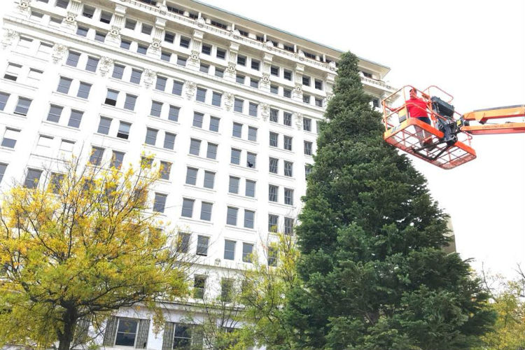 https://www.littlerock.com/images/default-source/blogs/downtown-partnership-holiday-tree-2017-750x500.jpg?sfvrsn=d40589b6_0