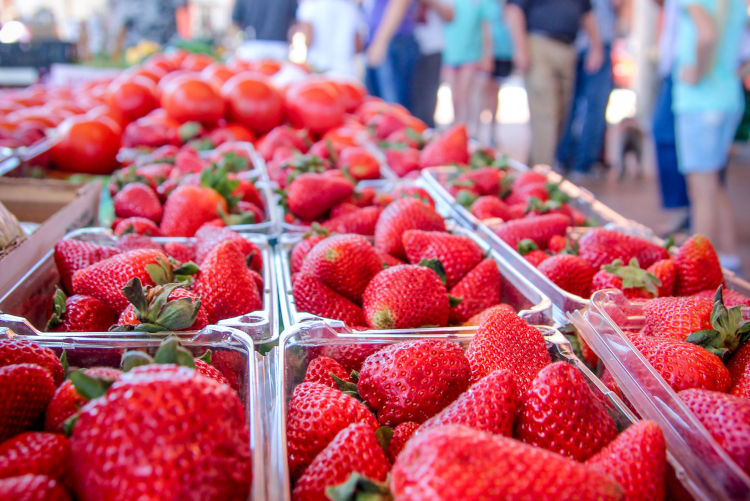10 Things to LOVE about the Little Rock Farmers' Market