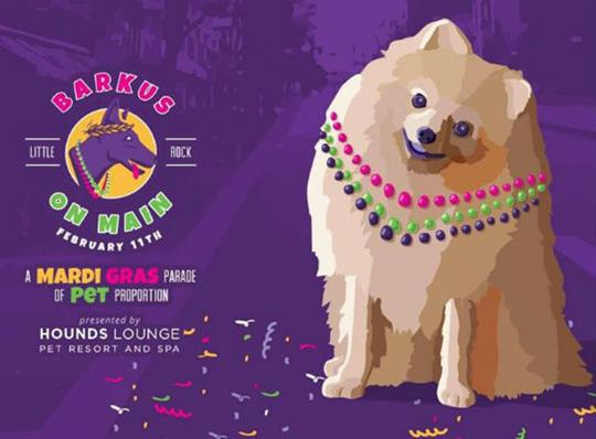Downtown Little Rock Partnership-barkus on main-2018